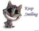 smal cat keep smilling funny pic background white